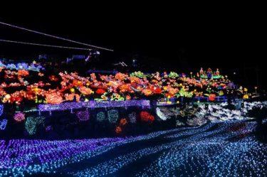 伊豆グランパル公園。【伊豆高原グランイルミ】は寒さも忘れる暖かさ!